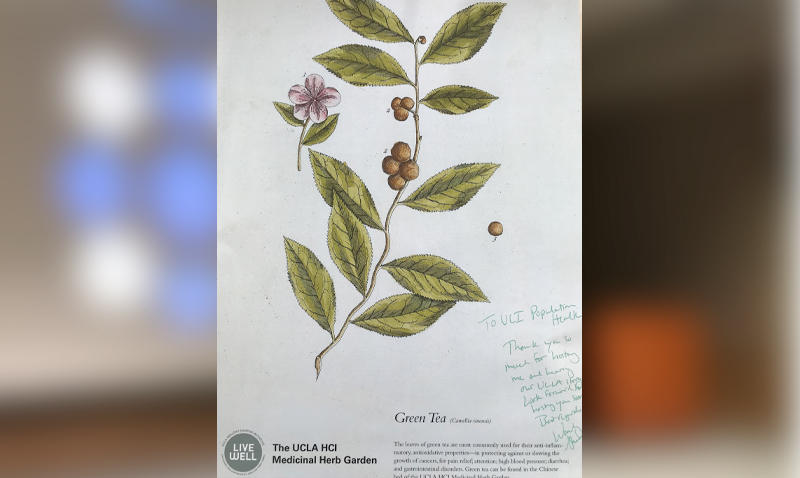 "Dr. Wendy Slusser, Associate Vice Provost for UCLA Healthy Campus Initiative, delivered a vibrant seminar on ""making the healthy choice the easy choice"" (Monday 5 February 2018). She autographed a print from UCLA's medicinal herb garden."
