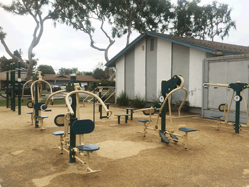 Changes in Physical Activity After Installation of a Fitness Zone in a Community Park <br><small>Research Publication by Mojgan Sami, PhD; Megan Smith, PhD; Oladele A. Ogunseitan, PhD</small>
